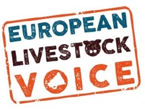 Opinie: Perspectivele sectorului european de creștere a animalelor asupra cererii pentru carnea artificială