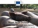 DG AGRI: Raport pe termen scurt - iunie 2012